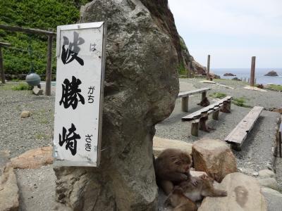波勝崎と土肥温泉