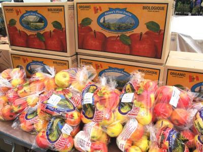 ブリティッシュ・コロンビア大学(3/全4): りんご祭り