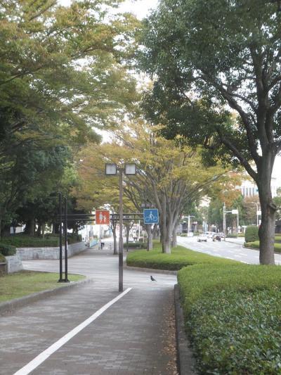 自転車でウロウロ… 2013.10.22 =富士宮市から富士市へ=