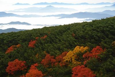 乗鞍高原の雲海と紅葉