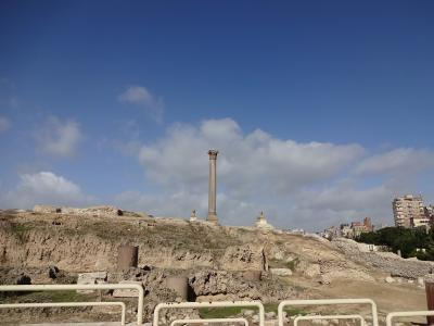 年末年始エジプトのはずが、年始エジプト7・8日目