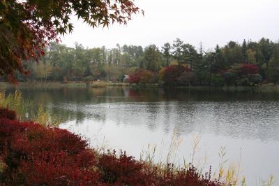 蓼科湖!紅葉を愛でながらランチ!最高のスパイスに感激・・・