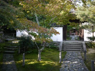 一休寺~けいはんな記念公園・・・少しずつ紅葉進んでいます