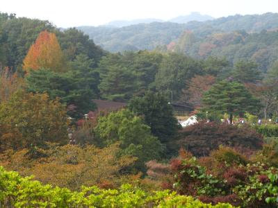 ほんのり秋色の宮沢湖温泉「喜楽里別邸」