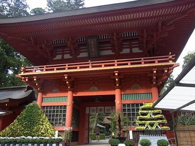 戸隠神社のおみくじから☆香取神宮へ