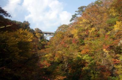 深く染まった紅葉が目に滲みる想い・・2013年秋、宮城・鳴子峡・・