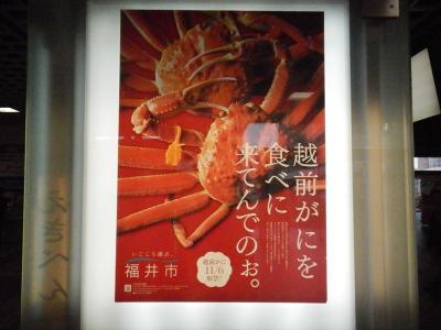 福井と言えば 越前カニと勝山市恐竜の里。