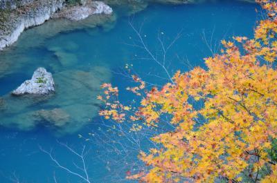 夜行日帰りで紅葉と温泉を~抱返り渓谷と水沢温泉郷~