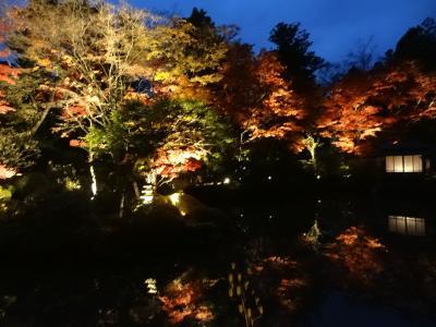 2013年紅葉を求めて北関東 滝めぐり(2) 華厳の滝、日光東照宮 栃木県
