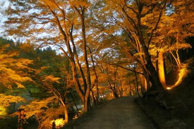 香嵐渓 紅葉にはちょっと早かった