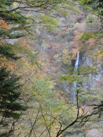 那須の紅葉 回顧の滝,留春の滝、風拳の滝、連珠の滝、仙鬢の滝・・・