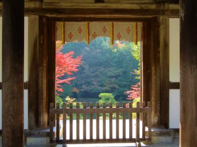 2013 奈良旅ー6 素晴らしき紅葉の園成寺さん 中