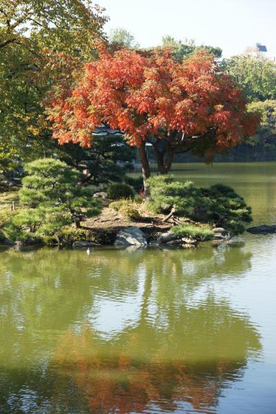 20131116-2 深川 清澄庭園の秋…は、あんまり紅く無いかな?