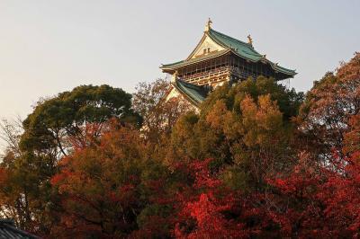 大阪城の紅葉、真田山陸軍墓地の紅葉