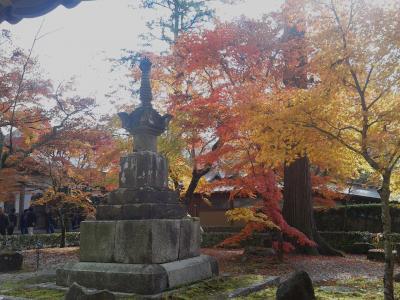 永源寺・鷄足寺・多良峡の3ヶ所の紅葉を楽しんだ日帰りツアー