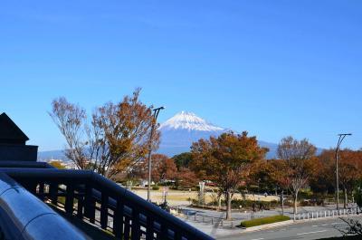 富士市中央公園をウロウロ… 2013.11.24