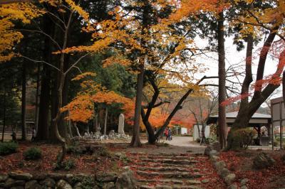 滋賀県 鶏足寺 (紅葉)を訪ねて