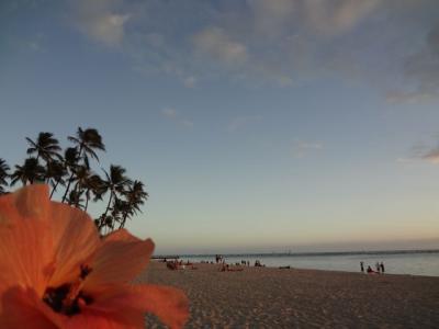 冬に行く南国旅~はじめてのハワイ~やっぱりすごかった ちょーどいい!