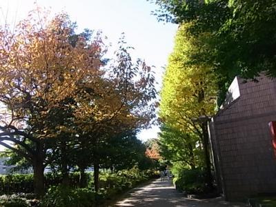 ラフォーレ東京~品川教会~御殿山ガーデン