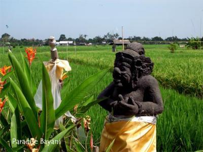 Bali de Bintang Vol.2  (Kerobokanより北へ)