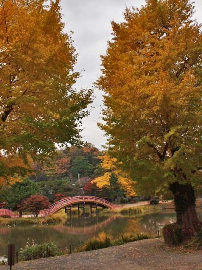 金沢八景から金沢文庫・称名寺へ歩く