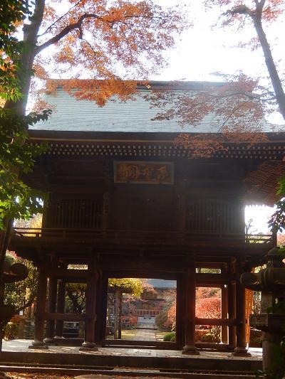 久しぶりに多福寺を訪問する