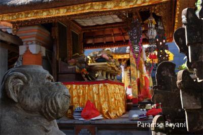 Bali de Bintang Vol.3-1 (Ubud)