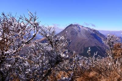 霧氷の鶴見岳