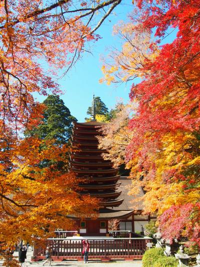 紅葉の奈良 談山神社~奈良公園