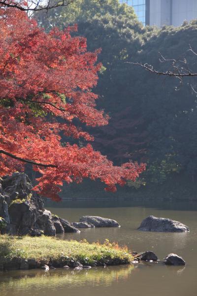 小石川後楽園の紅葉を愛でる