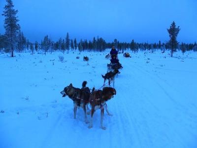 フィンランドを北上してオーロラを観る旅(サーリセルカ編2)