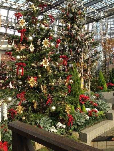 安城デンパーク でクリスマス気分満喫~。