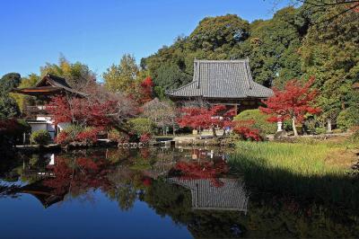 奈良怖いとこツアー 長岳寺 地獄絵のあるところ 入江泰吉も泣く風景