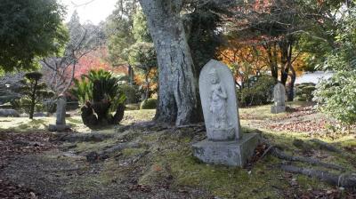 晩秋の西大和から斑鳩・奈良公園まで