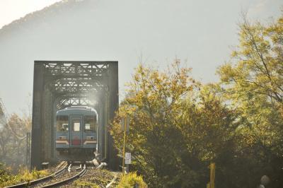 樽見鉄道沿線の小さな秋を探しに訪れてみた
