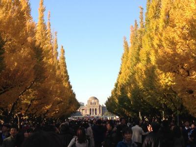 2013年秋 秋晴れの中、『神宮外苑いちょう祭り』(2013年12月9日まで開催)へ!