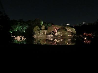 六義園紅葉ライトアップ(2013年11月)
