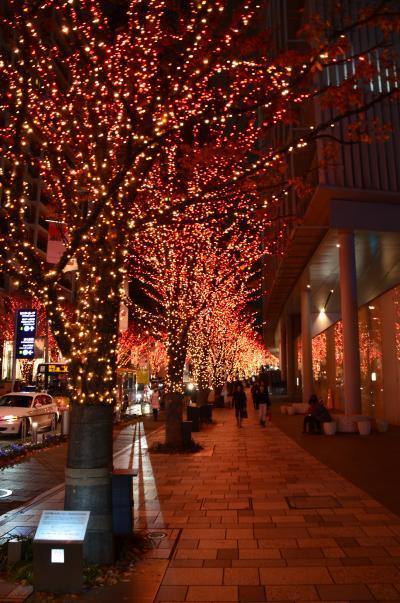 家の近所のクリスマスイルミネーション 2013  ~白金・六本木・芝・五反田編~