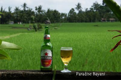 Bali de Bintang Vol.3-3 (Ubud)