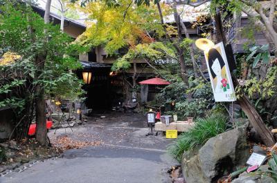 熊本・鹿児島温泉巡り 1 黒川温泉