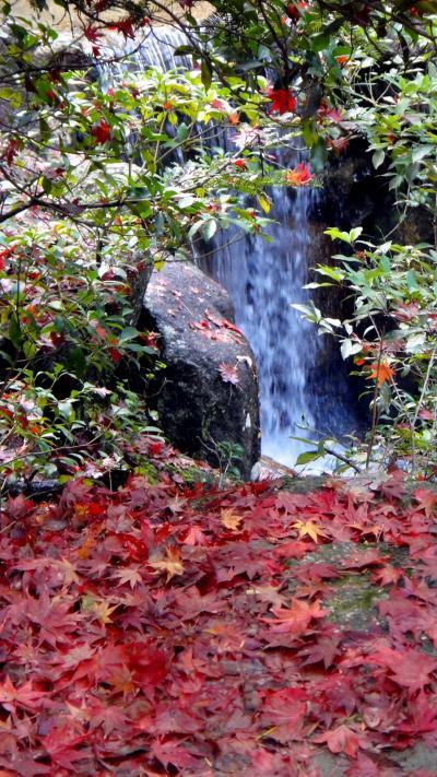晩秋の九州旅行 1. 立ち寄りの宮島、紅葉谷