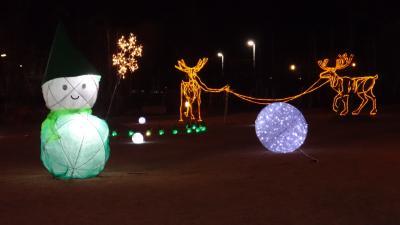 安城デンパーク でクリスマスイルミネーションがスゴくキレイでした~。