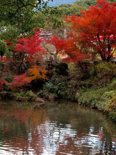 晩秋の九州旅行 2. 太宰府天満宮と光明禅寺の紅葉
