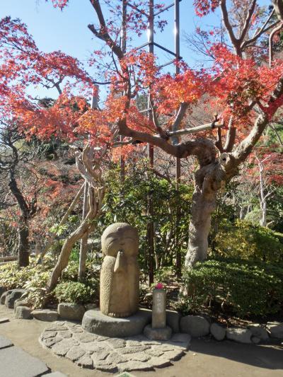 長谷寺の紅葉 そして「和み地蔵さん」に会いに…