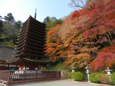 2013紅葉の奈良でオフ会3連発【その2】ようこそちょんたさん!談山神社で紅葉狩りwithガブちゃん