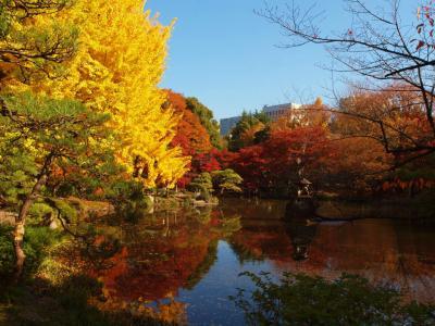 2013 晩秋 日比谷公園 上 雲形池 紅葉 黄葉