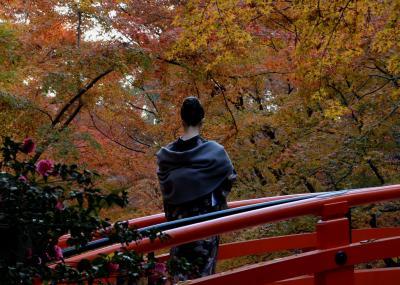 京都・福井 紅葉を求めて4日間(6) 三日目後半 真如堂ー北野天満宮