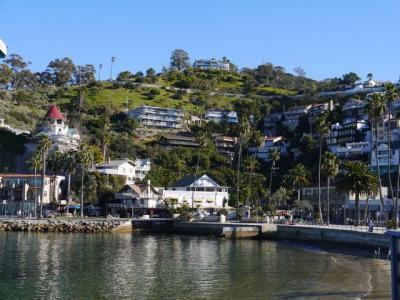 冬のカリフォルニアの風♪8爽やかサンタカタリーナ島