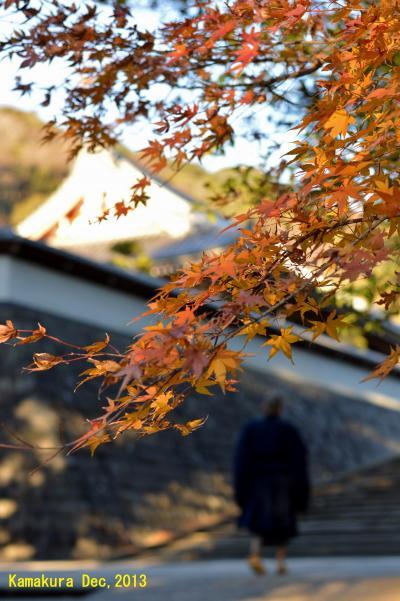 【神奈川県(鎌倉)】 冬の夕暮れ散歩「北鎌倉の禅刹・円覚寺へ」