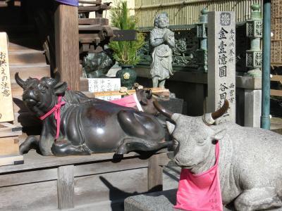 生駒のお山の宝山寺に行ってみました 2013年末